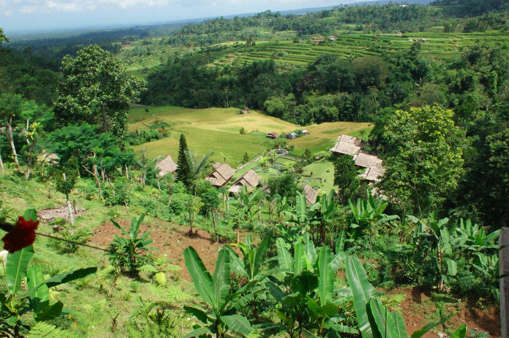 Vue panoramique du Restaurant Pacung.