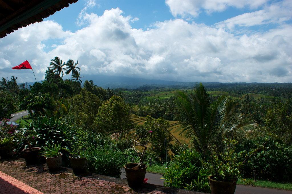 Panorama à Pupuan