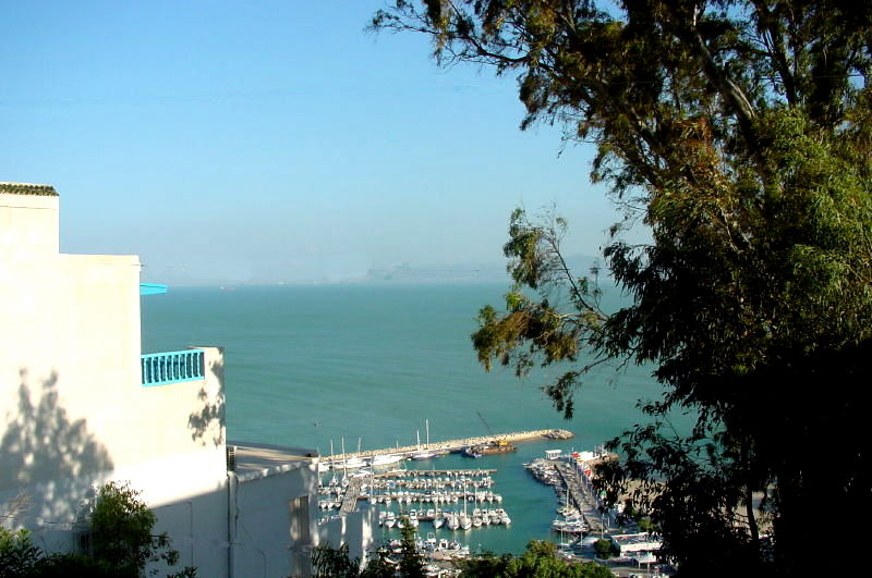 Port Sidi Bou Said 2