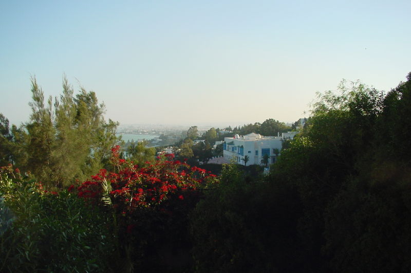 Villa Erlanger à Sidi Bou Said 2
