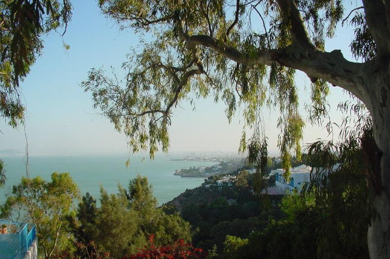 Villa Erlanger à Sidi Bou Said
