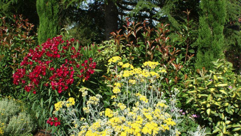 jardin5744.jpg
