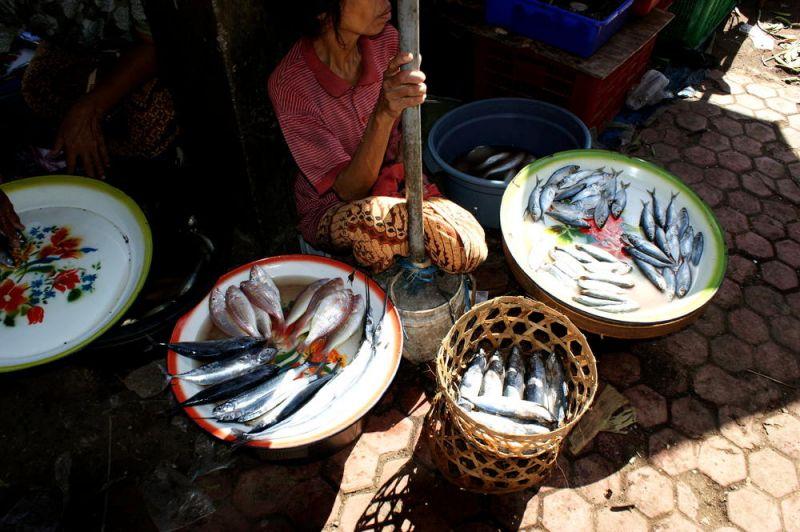 Fishes at Singaraja Market.jpg